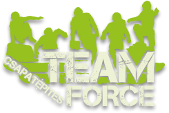 Team Force logo